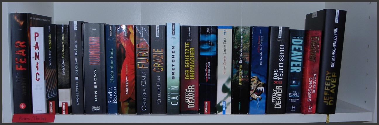 Bücherreihe regal  August | 2013 | Lesemomente | Seite 11