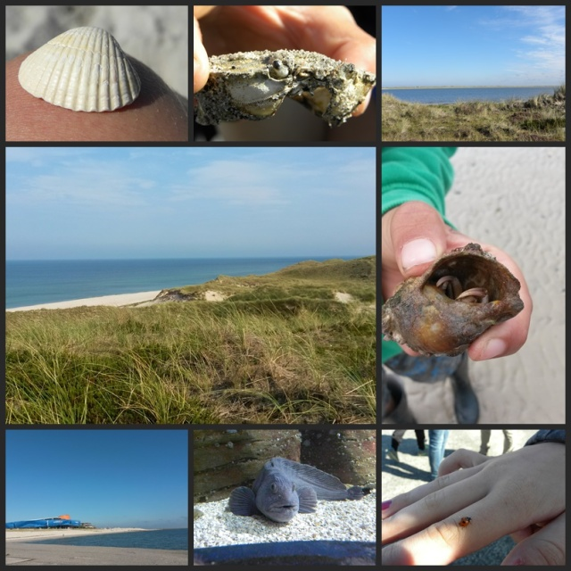 Sylt-Collage
