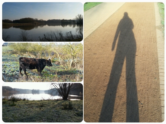 Bilder vom heutigen Sonnenspaziergang